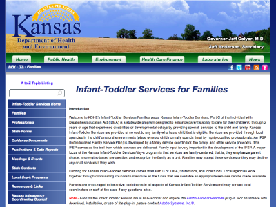 Infant-Toddler Services for Families